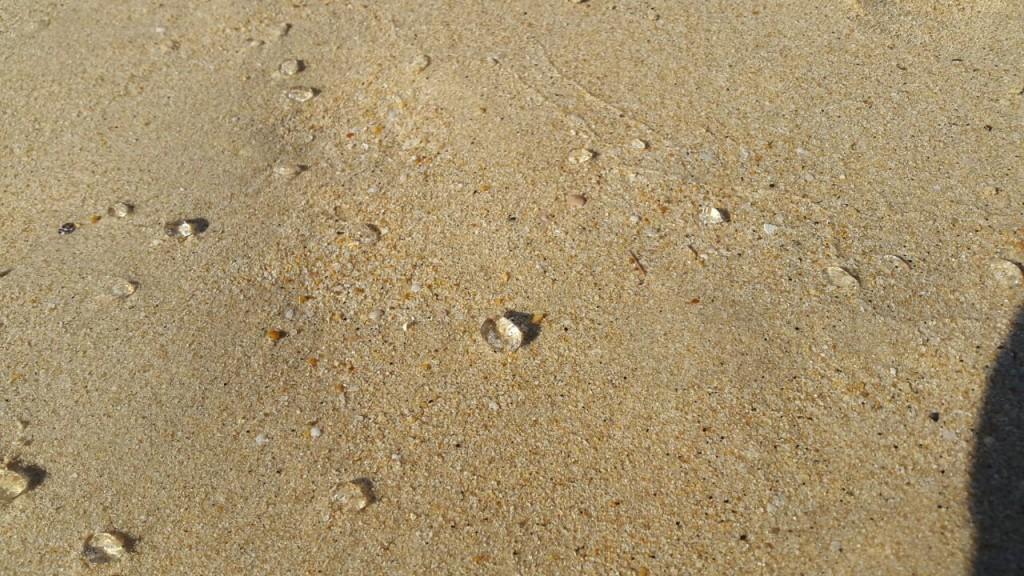 Бриллиантовый пляж Nai Harn