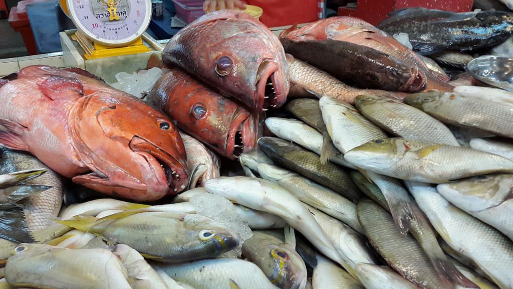 Зубастые рыбины