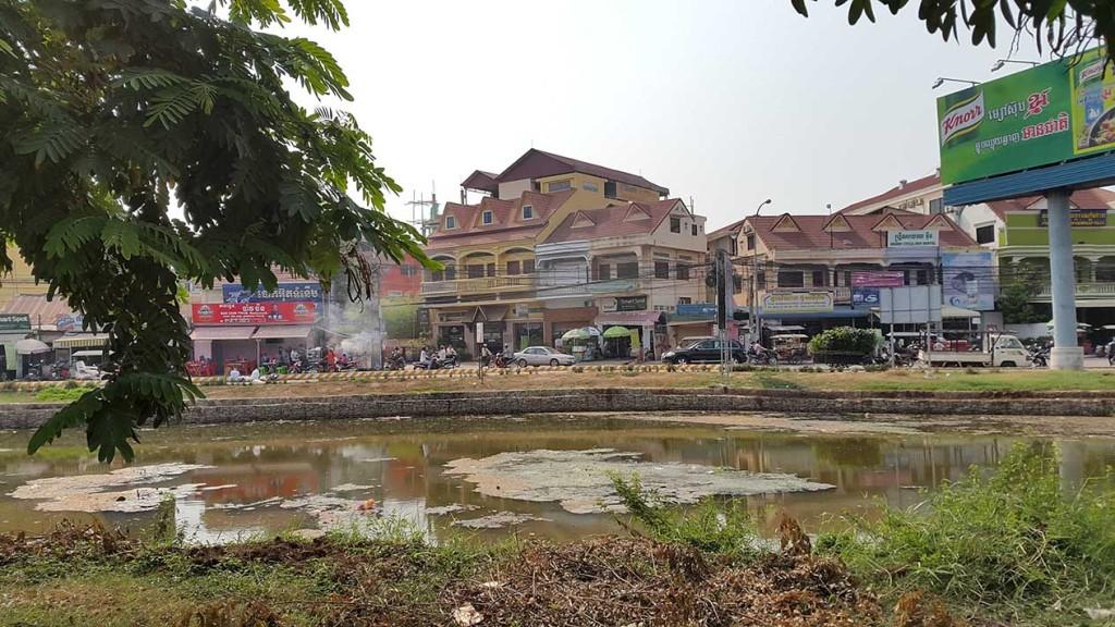 Типичный вид для Камбоджи