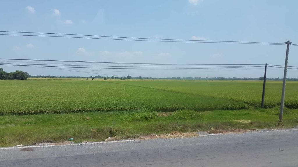 А вот и Вьетнам