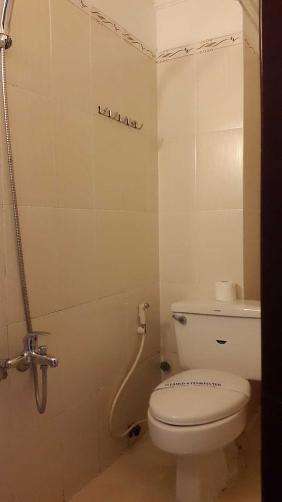 Ванна и туалет практически 2 в 1. Кстати Вьетнам - первая страна Азии, где для горячей воды есть отдельная труба, как и у нас. В других странах в ванных везде стоит бойлер, который на ходу нагревает холодную воду.