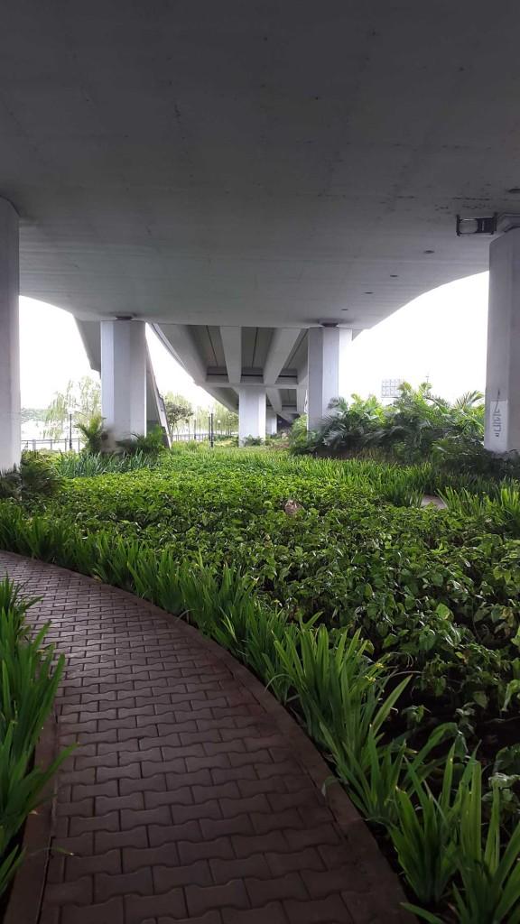 Даже под мостом здесь сажают растения и цветы.
