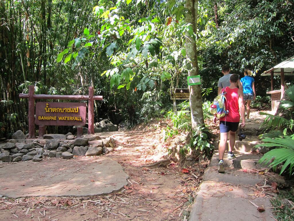 Приближаемся к водопаду Bang Pae. Чтобы добраться до него, нужно пройти метров 300 по извилистой дорожке национального заповедника.