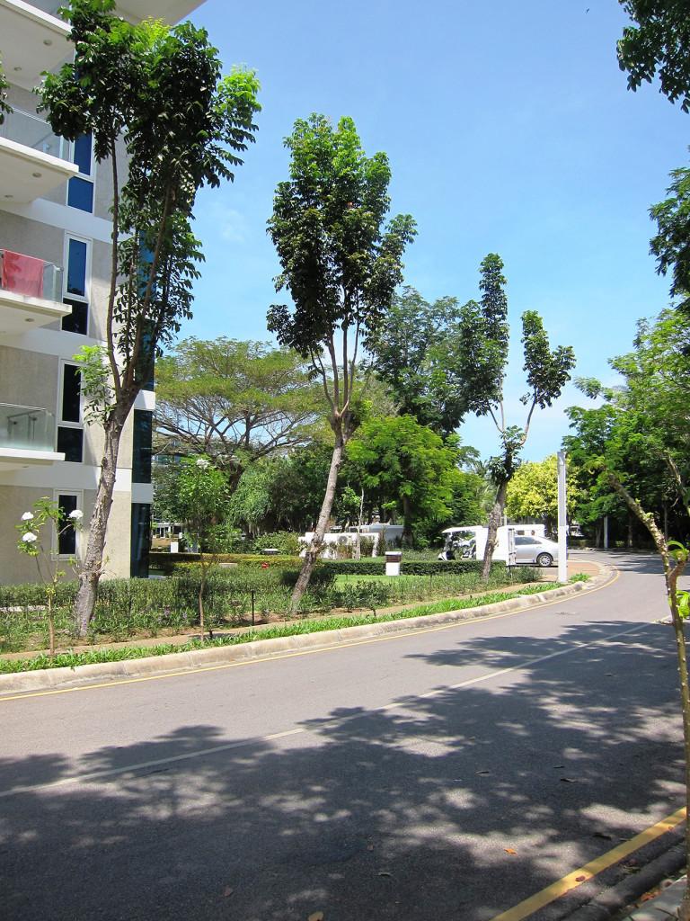 Чтобы подойти к пляжу Mai Khao, к той части, которая ближе к аэропорту, нужно пройти через территорию роскошного отеля Centara