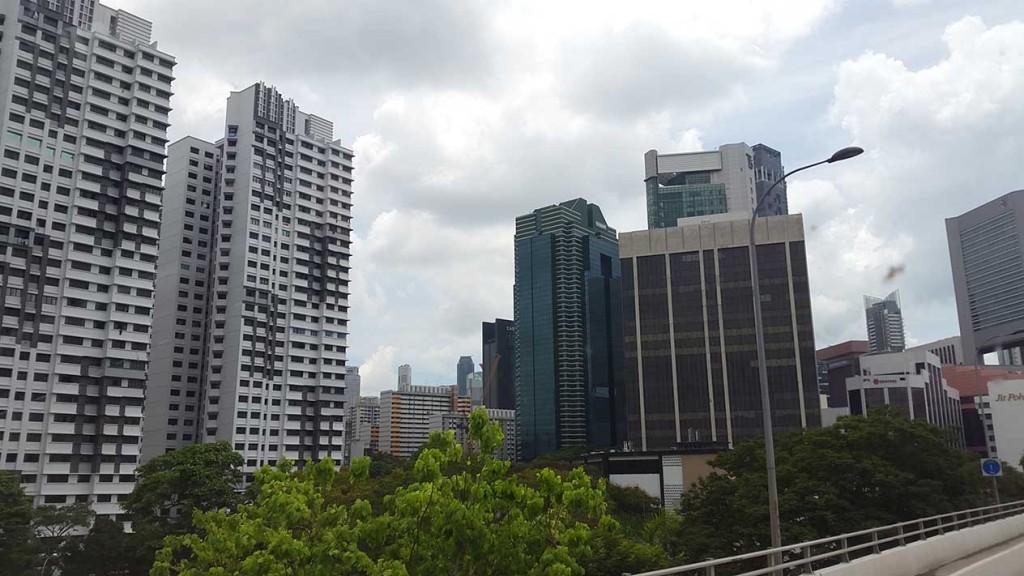 Зелень и небоскребы.