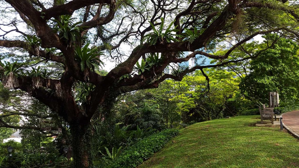 Мне лично очень понравился вид на небоскреб сквозь зелень деревьев в парке.