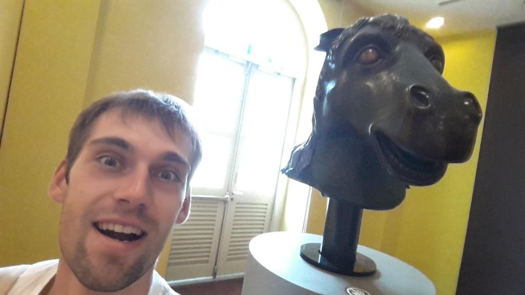Селфи с своим годом лошади. Вроде похожи.