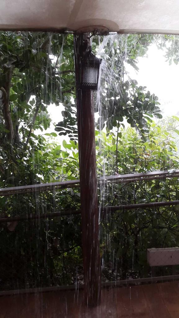 Сафари встречало проливным дождем.