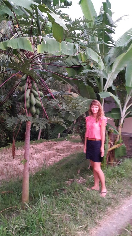Лена нашла папайю