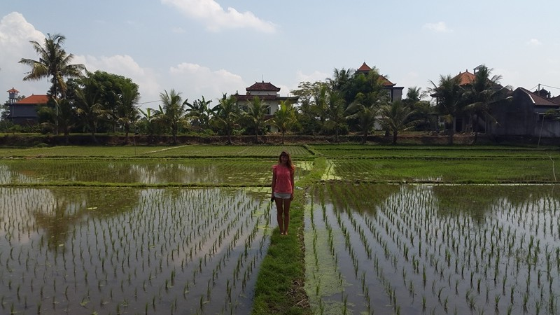 Лена устала отдыхать и посадила рис!