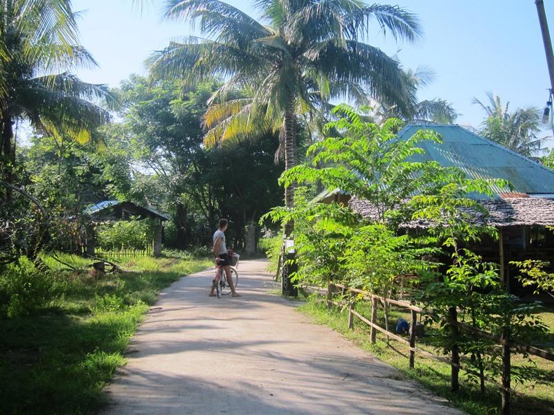 А вот типичный деревенский пейзаж и я на велосипеде. Еще бы только пальму подрезать.